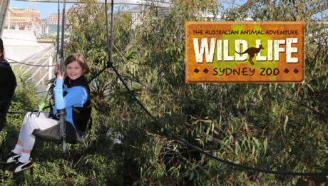 WILD Flight at WILD LIFE Sydney Zoo