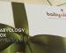 Babyology Subscription Box