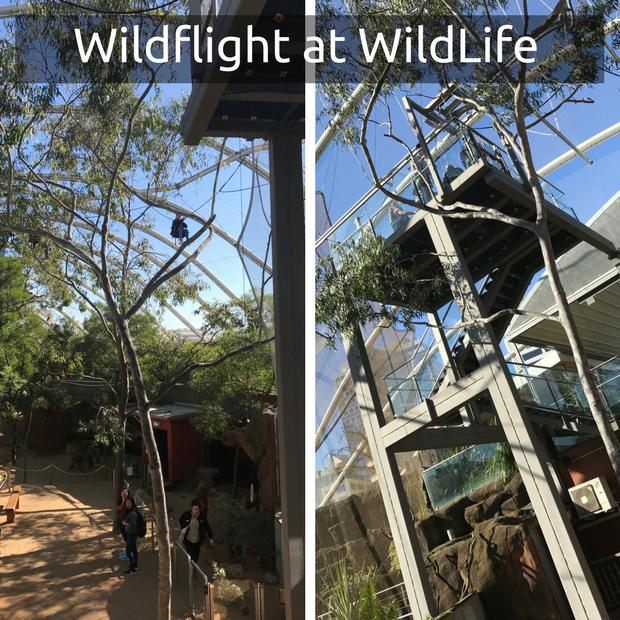 WildFlight